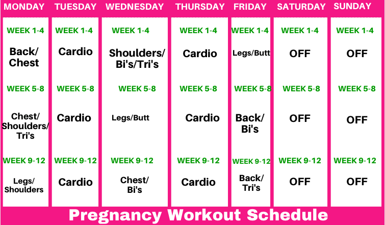 3 Month Pregnancy Workout Schedule - Michelle Marie Fit